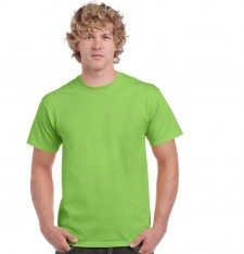 ULTRA COTTON™ ADULT T-SHIRT 2000 145